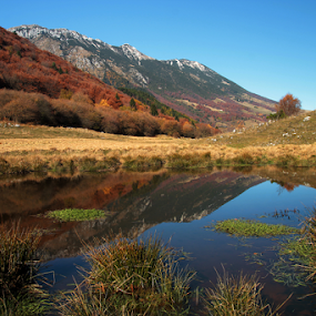Waterhole by Giancarlo Ferraro - Landscapes Mountains & Hills ( field, nature, autumn, colors, fall, meadow, leaves )