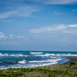 Caribbean Coast by Laurie Crosson - Landscapes Beaches ( beach scene, beach, caribbean coast, costa rica )