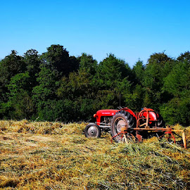 Make Hay While the Sun Shines by Ben Rohleder - Artistic Objects Industrial Objects ( nature, countryside, tractor, farm, fields, trees )