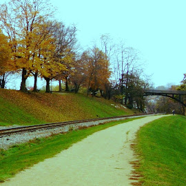 Galena Park Scene in Fall by Kathy Rose Willis - City,  Street & Park  City Parks ( train tracks, orange, galena, illinois, park, autumn, green, fall, trail, trees, bridge )