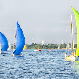 Sailboats in a Line by Carol Ward - Transportation Boats ( water, annapolis, sailboats, waterscape, boats, transportation, annapolis md )