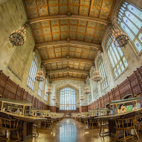 Study Time by Hamish Carpenter - Buildings & Architecture Public & Historical ( interior, michigan, fisheye, ann arbor, u of m, law library, library, study, historical, learning, law quad, education, university of michigan )