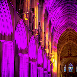 Columns of Light by Gary Hanson - Buildings & Architecture Architectural Detail ( purple, lighting, washington national cathedral, ceiling, segment, arches, columns, gold )
