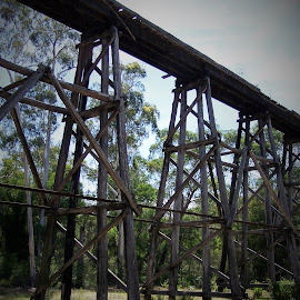 Trestle Bridge by Sarah Harding - Novices Only Objects & Still Life ( novices only, architecture, bridge, construction, design )