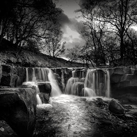 Nelly Ayre Foss by Tony Shaw - Black & White Landscapes ( north yorkshire, goathland, nelly ayre foss, waterfall )