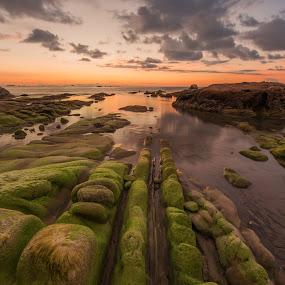 moss by Christianto Mogolid - Landscapes Sunsets & Sunrises ( terongkongan, sky, dawn, sunset, twilight, cloud, dusk, kudat, borneo, sabah )