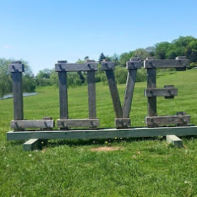 LOVE by Gary Strein - Artistic Objects Signs ( love, shenandoah national park., virginia, luray caverns., gary strein )