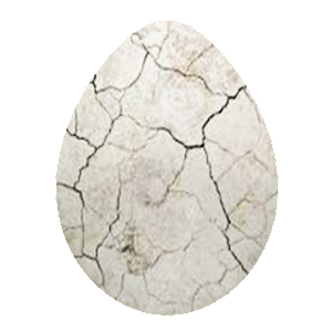Crack Egg for PC-Windows 7,8,10 and Mac