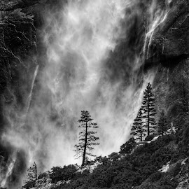 Yosemite Falls by Cathy Hood - Black & White Landscapes