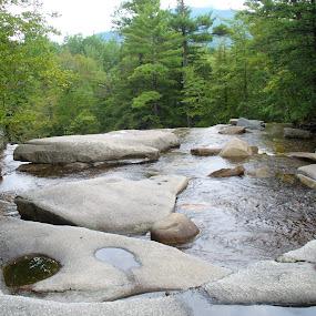 by Barbara Boyte - Nature Up Close Rock & Stone (  )