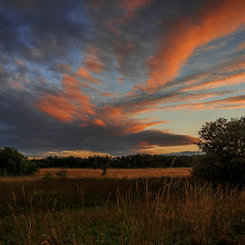 by Kennet Brandt - Landscapes Prairies, Meadows & Fields