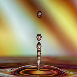 ... by Hale Yeşiloğlu - Abstract Water Drops & Splashes ( abstract, water, liquid, waterdrop, abstract art, drop, drops )