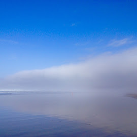 fog bank by Bob Applegate - Instagram & Mobile iPhone ( reflection, sky, fog, ocean, beach )