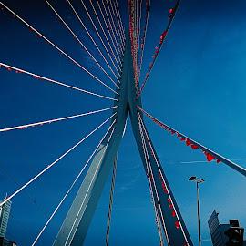 by Zlatko Cheshlarov - Buildings & Architecture Bridges & Suspended Structures