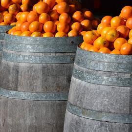 full bucket of oranges by Miran Jurgele - Food & Drink Fruits & Vegetables