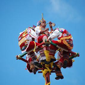 Voladores de Papantla by Brenda Comer - People Street & Candids