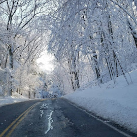 Driving...winter wonderland by Malini Rao - Landscapes Weather