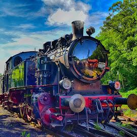 Preoud Steam Engine by Marco Bertamé - Transportation Trains ( steam engine, fond-de-gras, number, train 1900, 50, luxembourg, steam,  )