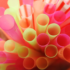 straws by Ana Paula Filipe - Abstract Patterns ( many, color, dronk, straws, close )