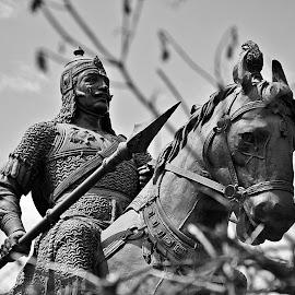 Maharana Pratap's statue  by Pradeep Kumar - Buildings & Architecture Statues & Monuments