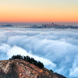 Above the Clouds  by Sagarika Roy - Landscapes Cloud Formations ( clouds, cityscapes, natural light, skyline, golden gate bridge, city, mountains, nature, sunset, bridge, nikon, natural, san francisco, relax, tranquil, relaxing, tranquility )