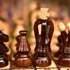 Aligning ! by Marco Bertamé - Artistic Objects Other Objects ( bishop, queen, crown, horse, chess, boukeh, sdof, king, close-up, cross )