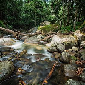 lata bukit hijau by P Hin Cheah - Landscapes Waterscapes ( stream, baling kedah, waterfall, lata bukit hijau )