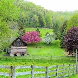 Country Charm  by Dean Ramsay - Landscapes Prairies, Meadows & Fields ( farm, fence, farmscape, hills, buildings, trees, blossoms )