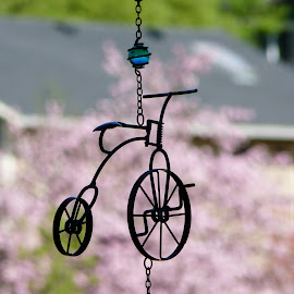 Crusin' Through the Flowers by Laurie DeMent - Artistic Objects Other Objects (  )