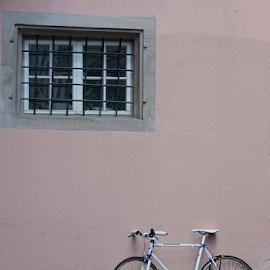 Pink bike by Gwen Paton - City,  Street & Park  Neighborhoods ( . )