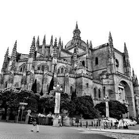 Catedral de Segovia. by Alexandre Rios - Black & White Buildings & Architecture ( religion, blackandwhite, europe, details, church, segovia, cathedral, architecture, cityscape, photography, spain )