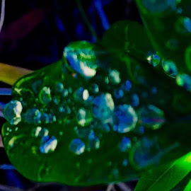 Abstract Lapis Raindrops... by Debbie Squier-Bernst - Abstract Water Drops & Splashes