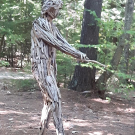 The Water Researcher by Eric Gagnon - Artistic Objects Other Objects ( sculpture, wooden, tree, nature, wood, texture, forest, man )