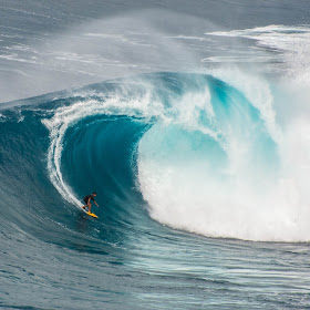 Jaws Surfer 1.jpg