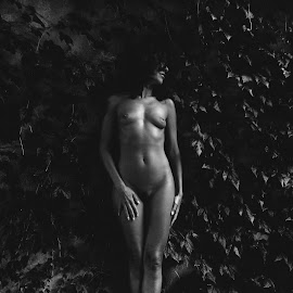 Hedy by Luca Noto - Nudes & Boudoir Artistic Nude ( model, nude, black and white, texture, italy )
