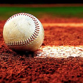 End of the Season by Richard Timothy Pyo - Sports & Fitness Baseball (  )
