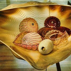 Creative by Ashwini Attri - Artistic Objects Still Life