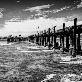 2018-07-07 Bodega Bay (42 of 83)-Edit-2.JPG