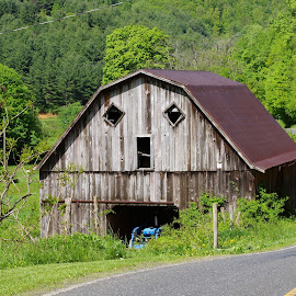 Boo Barn  by Melissa Osborne - Buildings & Architecture Other Exteriors ( mountain, barn, weathered )