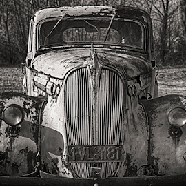 Vintage cars by Adrian Urbanek - Transportation Automobiles