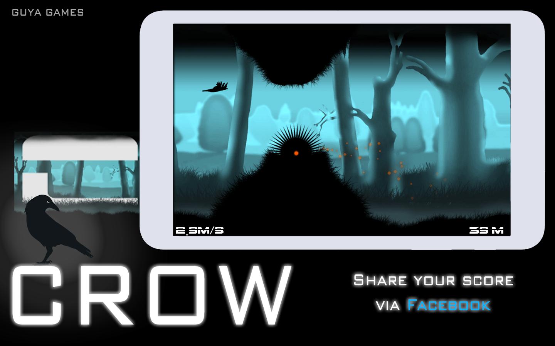 Crow 14