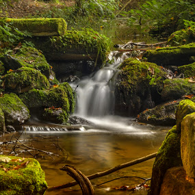 Dolský potok (Dubá / CZ) by Klaus Müller - Nature Up Close Water ( water, hdr, nature, green, waterfall, creek, stones, landscape, rocks,  )
