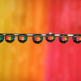 Drops Row..... by Aroon  Kalandy - Abstract Water Drops & Splashes ( concept, macro, color, waterdrios, kerala, india, refraction, rainbow )