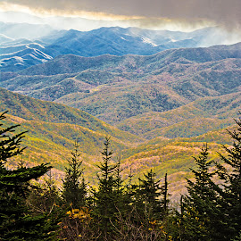 Autumn in the Mountains by Richard Michael Lingo - Landscapes Travel ( autumn, fall, travel, landscape, smoky mountains )