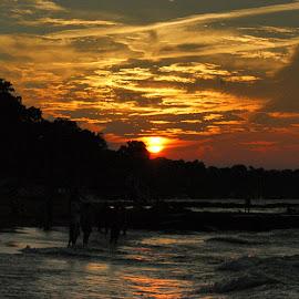 Lake Erie Sunset by Terri Mills - City,  Street & Park  City Parks ( beaches, sunset, lake, great lakes, lake erie )