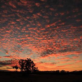 Gascoyne  Sunset by Darrell Munro - Novices Only Landscapes ( dm5, dm6, dm7, dm3, dm4 )