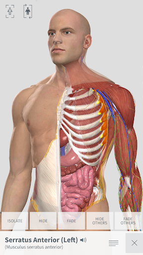 Complete Anatomy for Android screenshot for Android