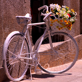 by Abilio Serrano - City,  Street & Park  Street Scenes ( new life, white, old town, flowers, bicycle )