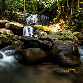 The Hidden Flow by Ted Khiong Liew - Nature Up Close Water ( water, tree, waterfall, rocks, river )
