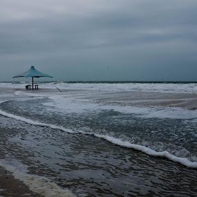 by Minette Estoque - Nature Up Close Water